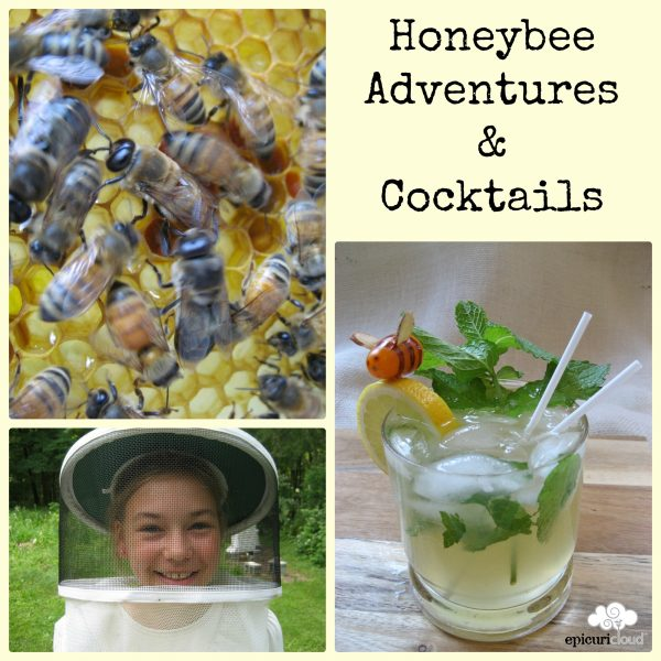 Bee 101: Meeting the Bees & A Honey of a Cocktail
