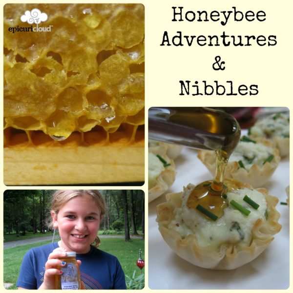 Bee 101: Getting Sticky & Honey Kissed Tartlets