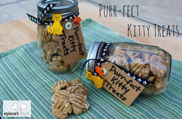 Purr-fect Kitty Salmon Treats