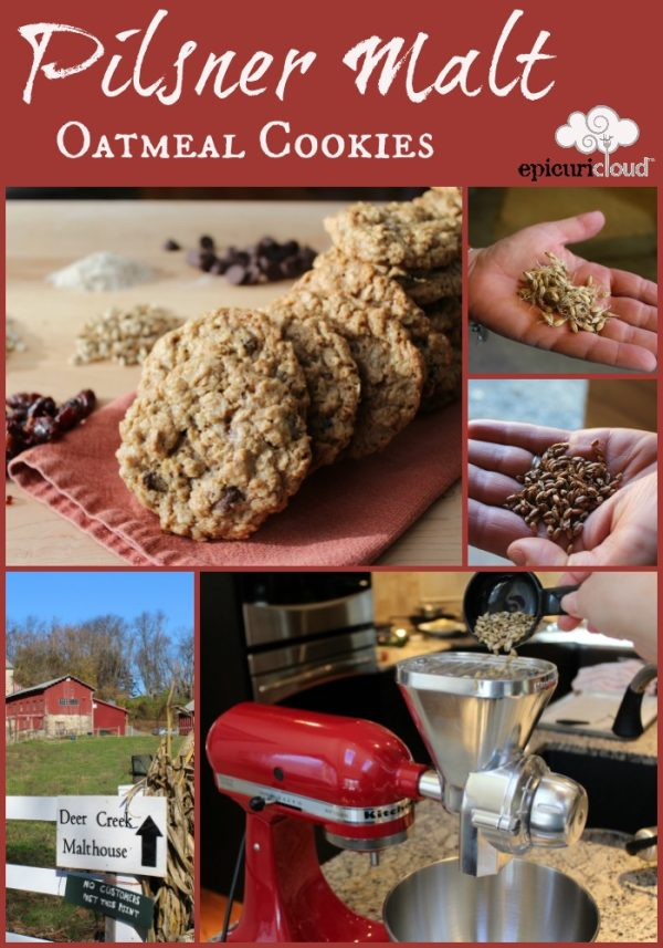 Pilsner Malt Oatmeal Cookie with Dried Cherries and Dark Chocolate