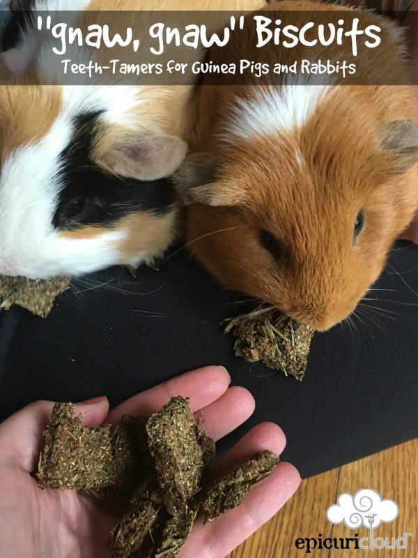 """gnaw, gnaw"" Biscuits: Teeth Tamers for Guinea Pigs and Rabbits"
