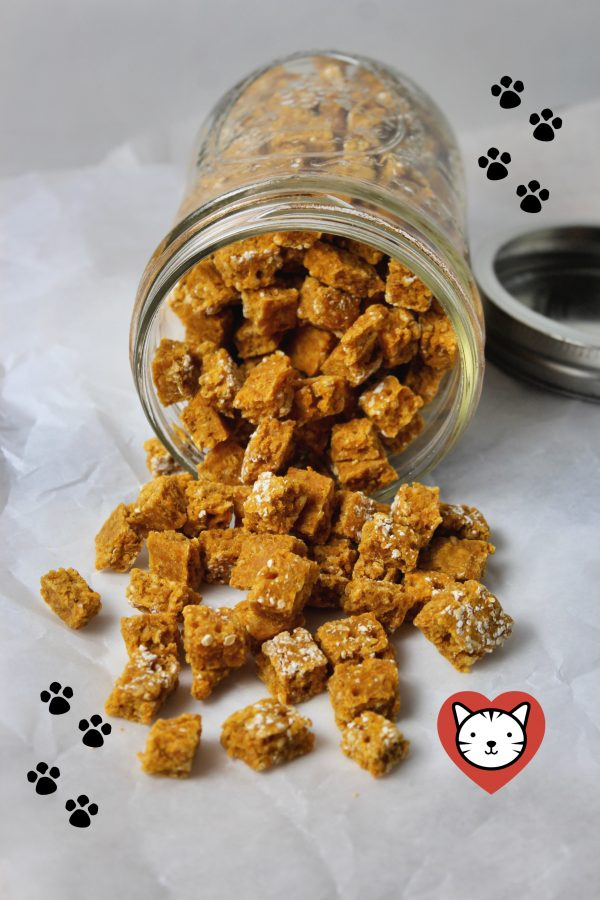 Pumpkin and Salmon Kitty Bits (Cat Treats)